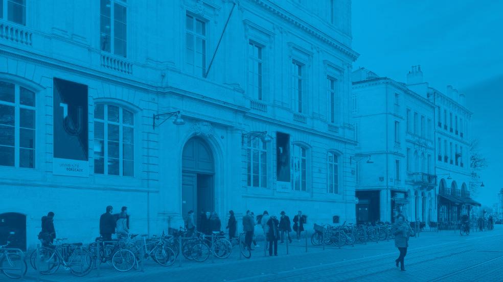 Université de Bordeaux CNRS foldsfun